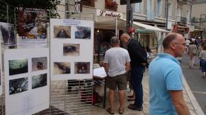 Fête du Sport à Blois dans Activités p9071845-300x168